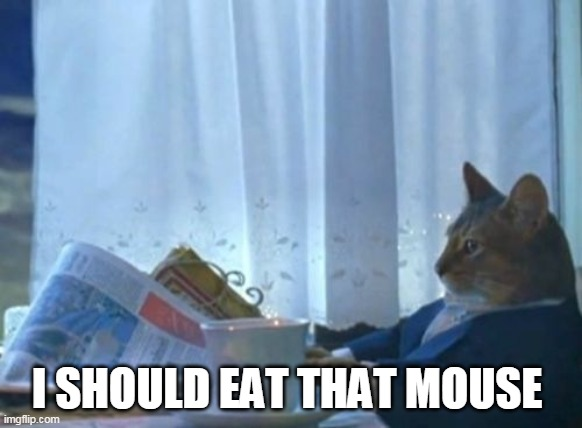 I Should Buy A Boat Cat |  I SHOULD EAT THAT MOUSE | image tagged in memes,i should buy a boat cat | made w/ Imgflip meme maker