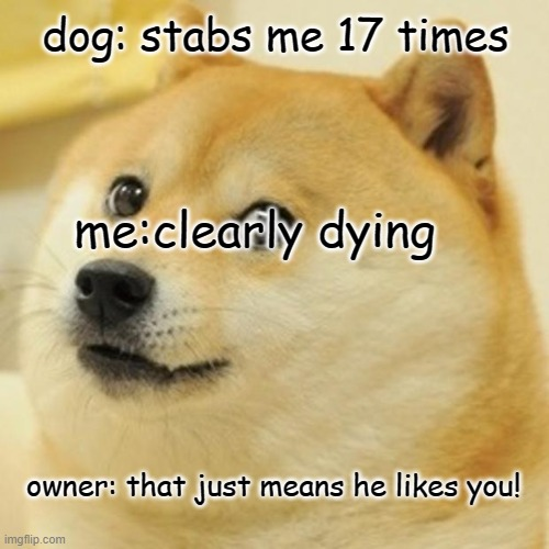 Doge Meme |  dog: stabs me 17 times; me:clearly dying; owner: that just means he likes you! | image tagged in memes,doge | made w/ Imgflip meme maker