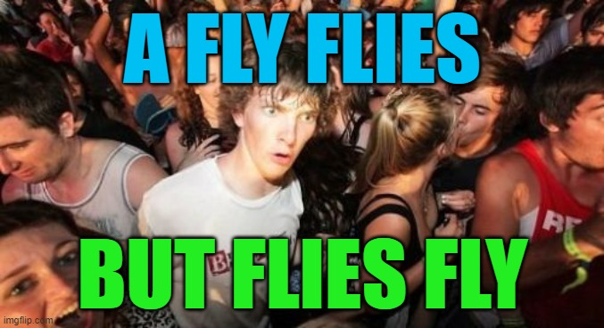 Flies Fly |  A FLY FLIES; BUT FLIES FLY | image tagged in memes,sudden clarity clarence,words,funny,english | made w/ Imgflip meme maker