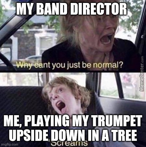Why Can't You Just Be Normal |  MY BAND DIRECTOR; ME, PLAYING MY TRUMPET UPSIDE DOWN IN A TREE | image tagged in why can't you just be normal | made w/ Imgflip meme maker