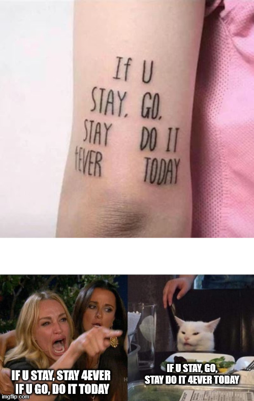 IF U STAY, GO, STAY DO IT 4EVER TODAY; IF U STAY, STAY 4EVER  IF U GO, DO IT TODAY | image tagged in memes,woman yelling at cat,memes | made w/ Imgflip meme maker