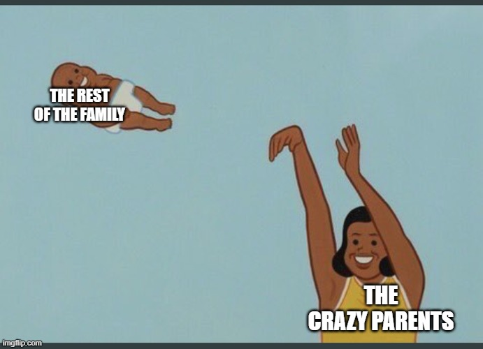 baby yeet | THE REST OF THE FAMILY THE CRAZY PARENTS | image tagged in baby yeet | made w/ Imgflip meme maker