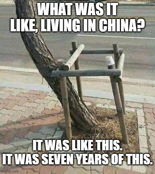 tree had one job |  WHAT WAS IT LIKE, LIVING IN CHINA? IT WAS LIKE THIS. IT WAS SEVEN YEARS OF THIS. | image tagged in epic fail,made in china,tree,you had one job | made w/ Imgflip meme maker