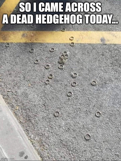 Sonic the Hedgehog |  SO I CAME ACROSS A DEAD HEDGEHOG TODAY... | image tagged in sonic the hedgehog,genesis,video games,videogames,sonic,video game | made w/ Imgflip meme maker
