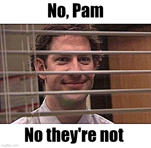 Jim Office Blinds | No, Pam No they're not | image tagged in jim office blinds | made w/ Imgflip meme maker