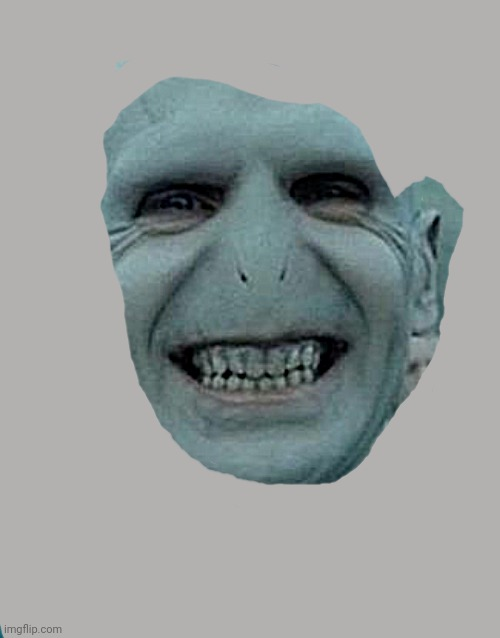 Voldemort Grin | image tagged in voldemort grin | made w/ Imgflip meme maker