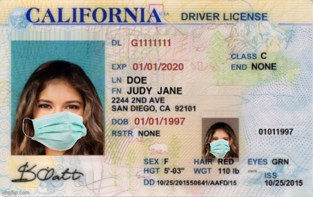 2020 License and Registration | image tagged in covid-19,face mask | made w/ Imgflip meme maker