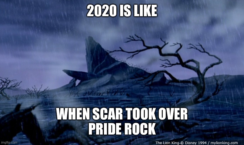 2020 is like |  2020 IS LIKE; WHEN SCAR TOOK OVER PRIDE ROCK | image tagged in 2020,scar,pride rock | made w/ Imgflip meme maker