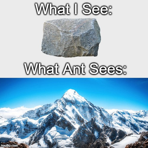 What I See:; What Ant Sees: | image tagged in ants | made w/ Imgflip meme maker