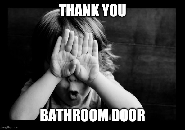 THANK YOU BATHROOM DOOR | image tagged in hiding eyes | made w/ Imgflip meme maker