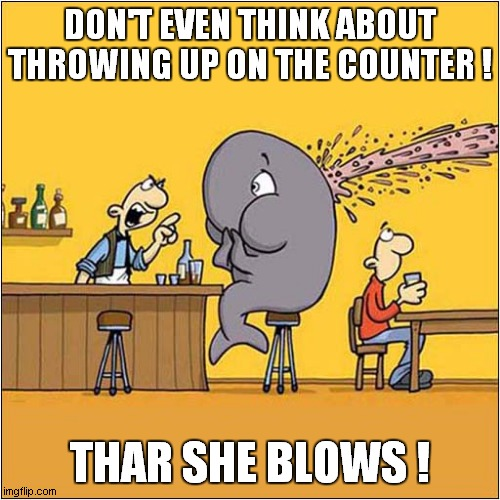 Whale Hail ! |  DON'T EVEN THINK ABOUT THROWING UP ON THE COUNTER ! THAR SHE BLOWS ! | image tagged in fun,whale,cartoon | made w/ Imgflip meme maker
