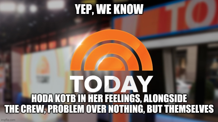 Mental News with some holdback |  YEP, WE KNOW; HODA KOTB IN HER FEELINGS, ALONGSIDE THE CREW, PROBLEM OVER NOTHING, BUT THEMSELVES | image tagged in government,one does not simply,judgemental,mental illness,first world problems | made w/ Imgflip meme maker