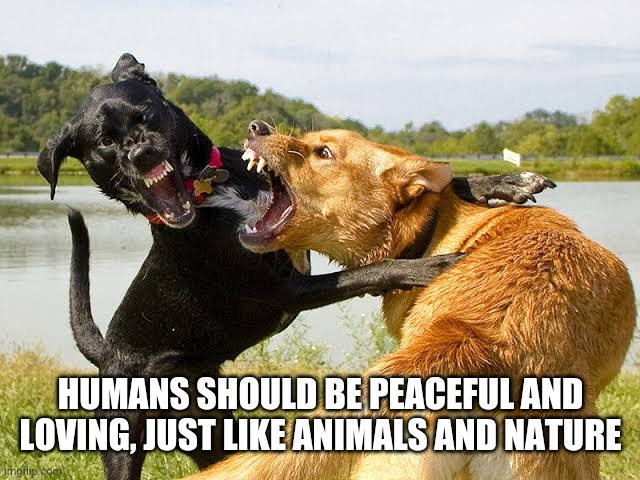 HUMANS SHOULD BE PEACEFUL AND LOVING, JUST LIKE ANIMALS AND NATURE | made w/ Imgflip meme maker