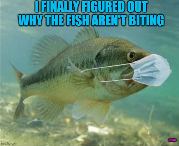 I FINALLY FIGURED OUT WHY THE FISH AREN'T BITING; ALZWEL | image tagged in fishing | made w/ Imgflip meme maker