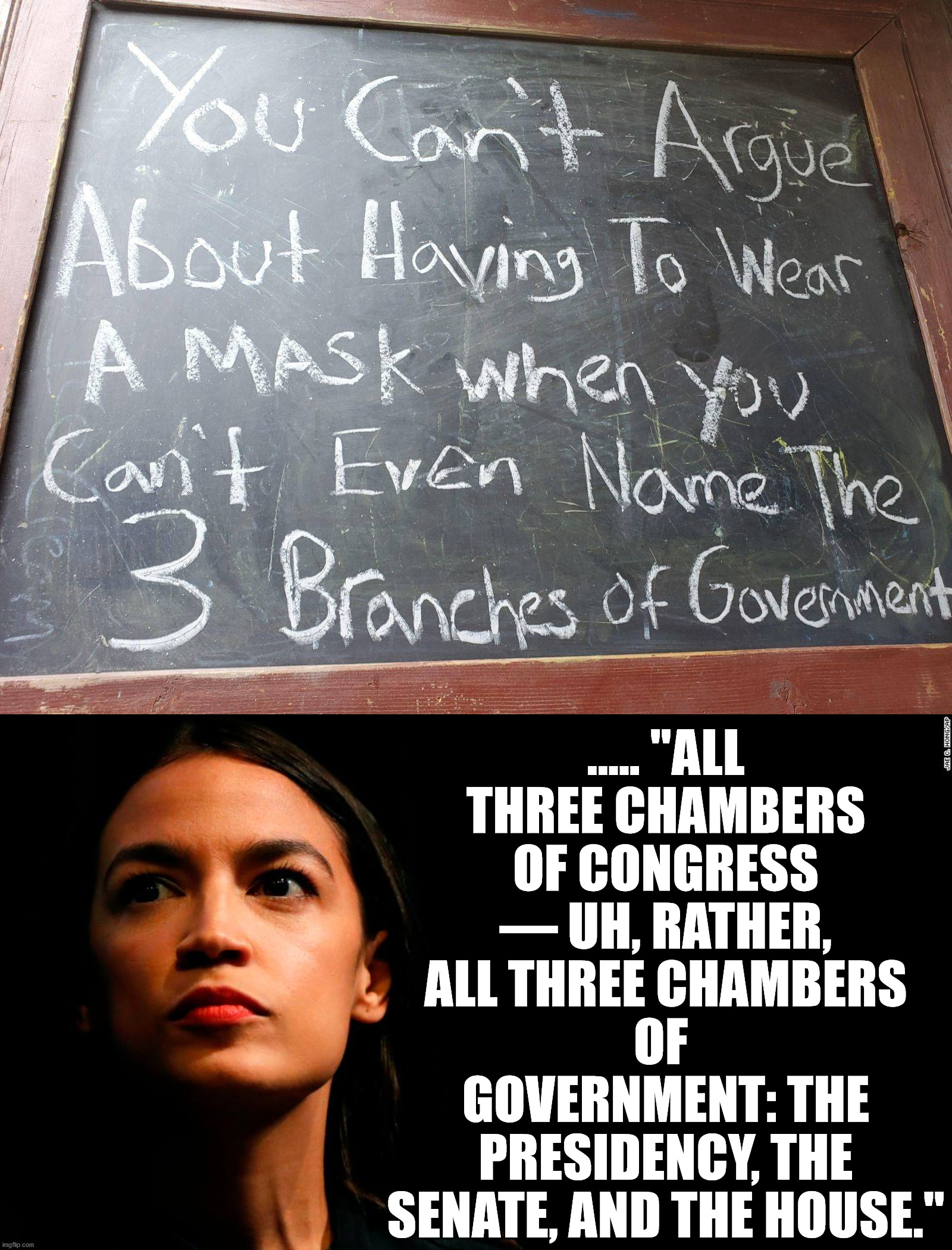 "Yes AOC did say that and she is serving in the government. Boy are we in trouble. |  ..... ""ALL THREE CHAMBERS OF CONGRESS — UH, RATHER, ALL THREE CHAMBERS OF  GOVERNMENT: THE PRESIDENCY, THE SENATE, AND THE HOUSE."" 