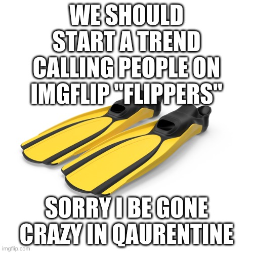 "trend..................... |  WE SHOULD START A TREND CALLING PEOPLE ON IMGFLIP ""FLIPPERS""; SORRY I BE GONE CRAZY IN QAURENTINE 