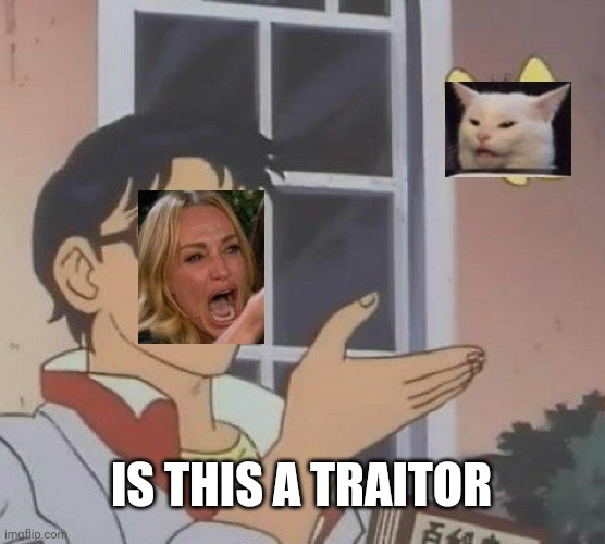 Cat transparent! |  IS THIS A TRAITOR | image tagged in memes,is this a pigeon,woman yelling at cat | made w/ Imgflip meme maker