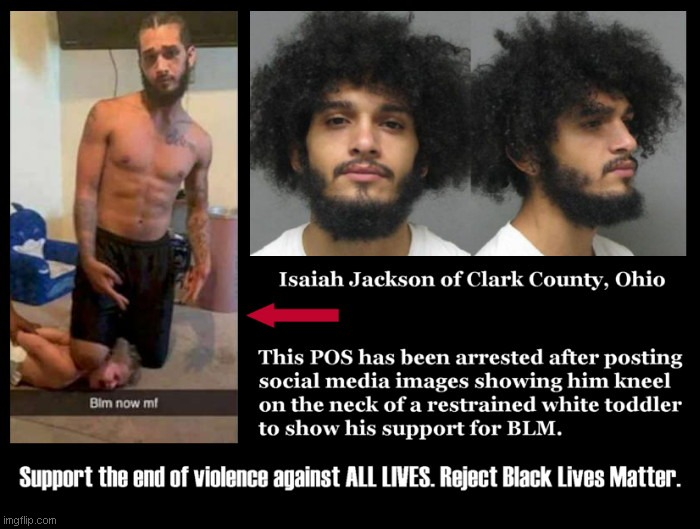 Reject the violent narrative of BLM. Reject it now. - Imgflip