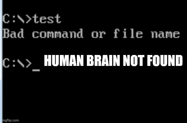 Bad Command or File Name |  HUMAN BRAIN NOT FOUND | image tagged in bad command or file name | made w/ Imgflip meme maker