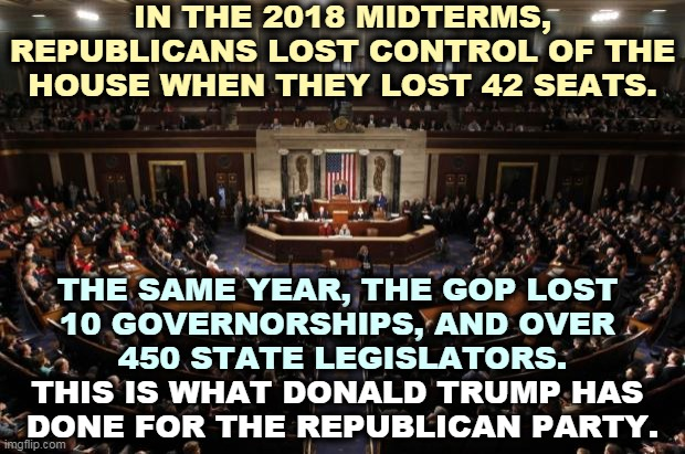 Good Ole' Trump |  IN THE 2018 MIDTERMS, REPUBLICANS LOST CONTROL OF THE HOUSE WHEN THEY LOST 42 SEATS. THE SAME YEAR, THE GOP LOST  10 GOVERNORSHIPS, AND OVER  450 STATE LEGISLATORS. THIS IS WHAT DONALD TRUMP HAS  DONE FOR THE REPUBLICAN PARTY. | image tagged in congress,governor,trump,loser,losers | made w/ Imgflip meme maker