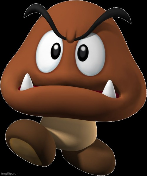 Goomba | image tagged in goomba | made w/ Imgflip meme maker