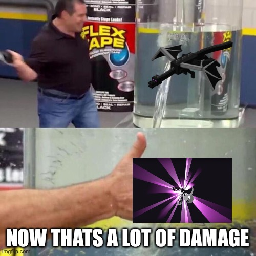 Phil Swift Slapping on Flex Tape |  NOW THATS A LOT OF DAMAGE | image tagged in phil swift slapping on flex tape | made w/ Imgflip meme maker