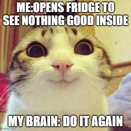 Smiling Cat |  ME:OPENS FRIDGE TO SEE NOTHING GOOD INSIDE; MY BRAIN: DO IT AGAIN | image tagged in memes,smiling cat | made w/ Imgflip meme maker