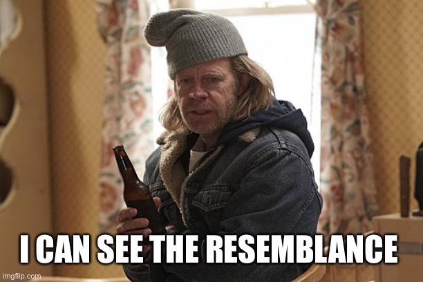Frank Gallagher  | I CAN SEE THE RESEMBLANCE | image tagged in frank gallagher | made w/ Imgflip meme maker