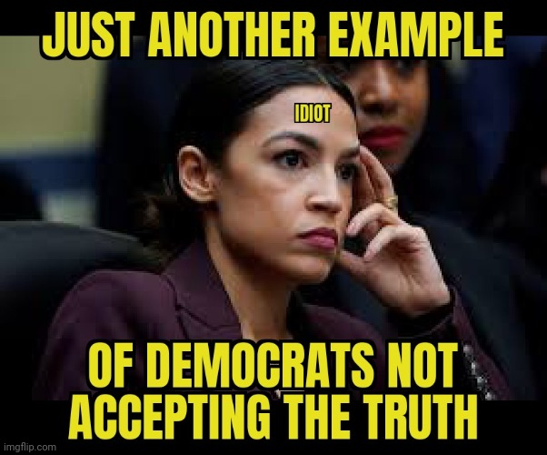 SHINING EXAMPLE | image tagged in aoc,alexandria ocasio-cortez,idiot | made w/ Imgflip meme maker