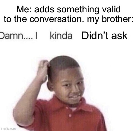 Me: adds something valid to the conversation. my brother:; Didn't ask | image tagged in damn i kinda dont meme,brothers,brother,big brother,annoying,rant | made w/ Imgflip meme maker