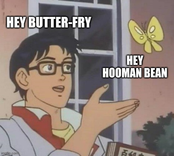 Is This A Pigeon |  HEY BUTTER-FRY; HEY HOOMAN BEAN | image tagged in memes,is this a pigeon,hello,butterfly | made w/ Imgflip meme maker