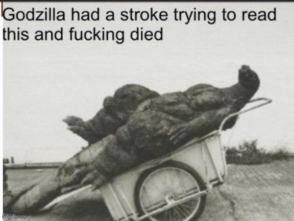 Godzilla had a stroke trying to read this and fucking died | image tagged in godzilla had a stroke trying to read this and fucking died | made w/ Imgflip meme maker
