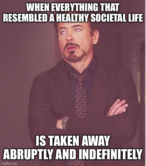 Face You Make Robert Downey Jr Meme |  WHEN EVERYTHING THAT RESEMBLED A HEALTHY SOCIETAL LIFE; IS TAKEN AWAY ABRUPTLY AND INDEFINITELY | image tagged in memes,face you make robert downey jr | made w/ Imgflip meme maker