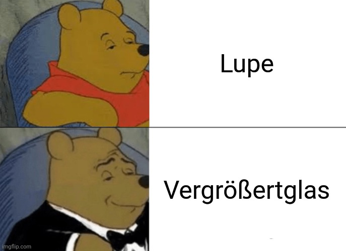 Nein |  Lupe; Vergrößertglas | image tagged in memes,tuxedo winnie the pooh | made w/ Imgflip meme maker