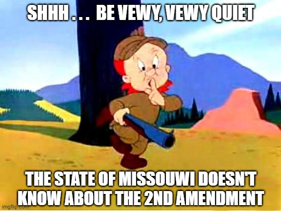Elmer Fudd says Missouri doesn't know about 2nd amendment |  SHHH . . .  BE VEWY, VEWY QUIET; THE STATE OF MISSOUWI DOESN'T KNOW ABOUT THE 2ND AMENDMENT | image tagged in meme,elmer fudd,2nd amendment,missouri,gun control,constitution | made w/ Imgflip meme maker