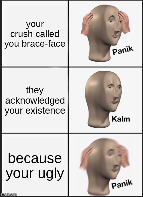 crush dilemma |  your crush called you brace-face; they acknowledged your existence; because your ugly | image tagged in memes,panik kalm panik | made w/ Imgflip meme maker