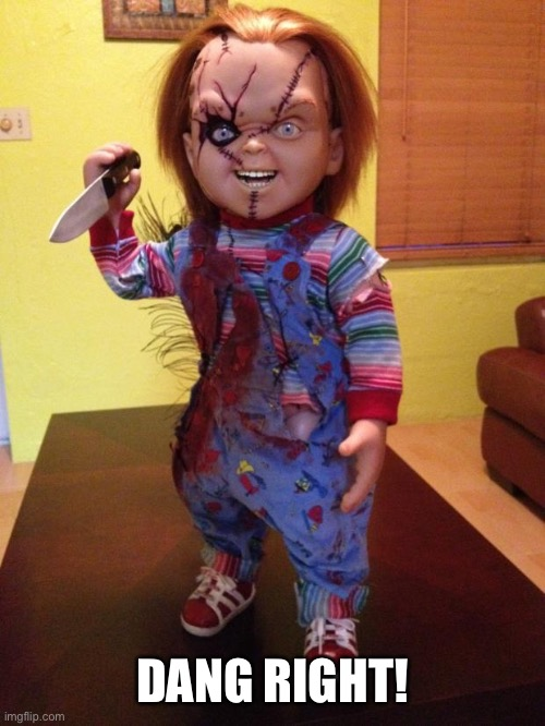 Chucky | DANG RIGHT! | image tagged in chucky | made w/ Imgflip meme maker