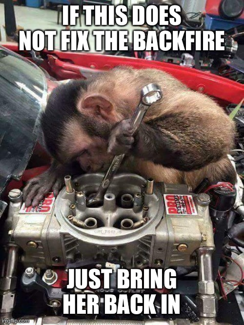 Monkey mechanic | IF THIS DOES NOT FIX THE BACKFIRE JUST BRING HER BACK IN | image tagged in monkey mechanic | made w/ Imgflip meme maker