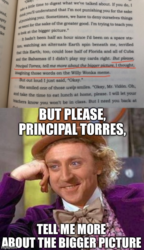 You're welcome Sal |  BUT PLEASE, PRINCIPAL TORRES, TELL ME MORE ABOUT THE BIGGER PICTURE | image tagged in memes,creepy condescending wonka,books | made w/ Imgflip meme maker