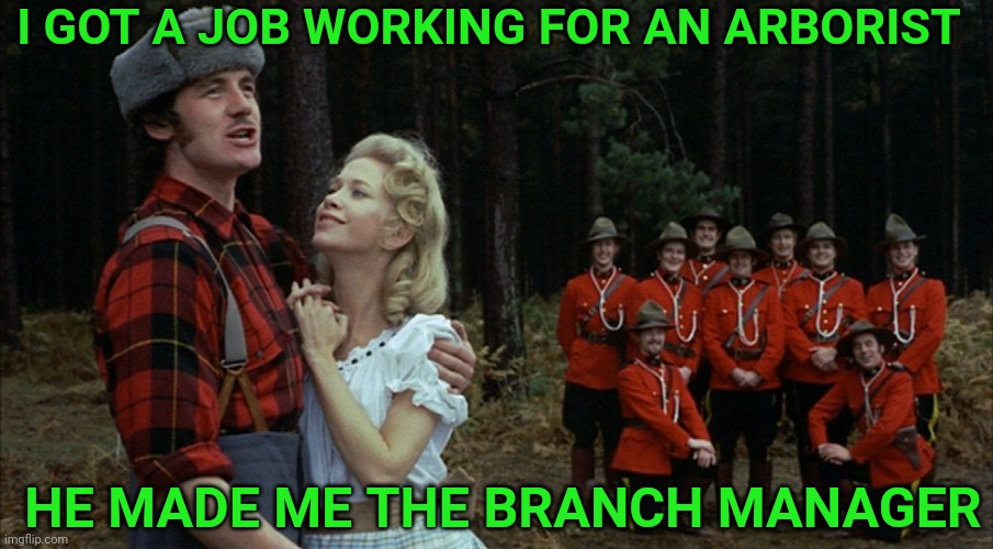 I'm a lumberjack and I'm ok |  I GOT A JOB WORKING FOR AN ARBORIST; HE MADE ME THE BRANCH MANAGER | image tagged in monty python lumberjack,manager,tree,chainsaw,bad pun | made w/ Imgflip meme maker