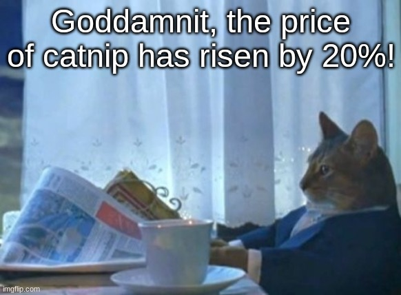 I Should Buy A Boat Cat Meme |  Goddamnit, the price of catnip has risen by 20%! | image tagged in memes,i should buy a boat cat | made w/ Imgflip meme maker