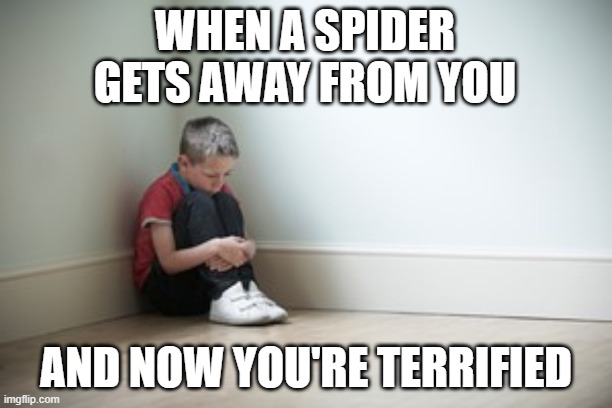 The Itsy Bitsy Spider |  WHEN A SPIDER GETS AWAY FROM YOU; AND NOW YOU'RE TERRIFIED | image tagged in sitting in a corner,memes,funny memes,funny,lmao,spider | made w/ Imgflip meme maker
