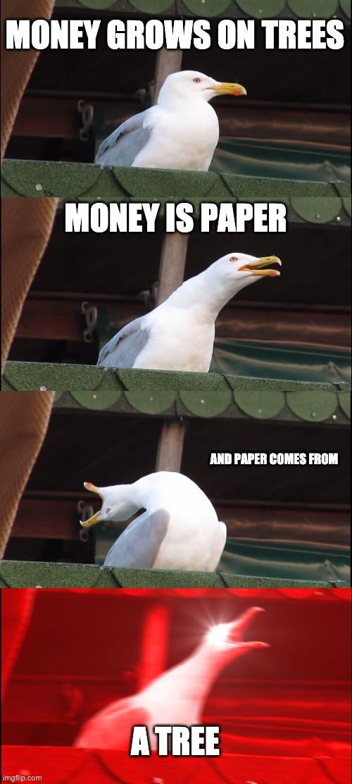 lokey sus |  MONEY GROWS ON TREES; MONEY IS PAPER; AND PAPER COMES FROM; A TREE | image tagged in memes,inhaling seagull | made w/ Imgflip meme maker