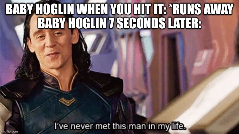 Baby hoglin |  BABY HOGLIN WHEN YOU HIT IT: *RUNS AWAY BABY HOGLIN 7 SECONDS LATER: | image tagged in i have never met this man in my life | made w/ Imgflip meme maker