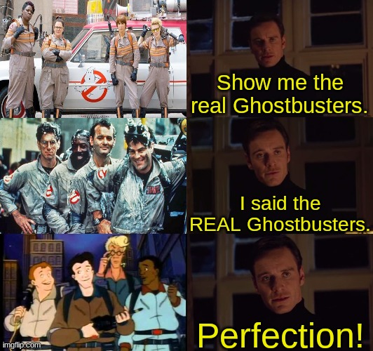 The Real Ghostbusters was LIT |  Show me the real Ghostbusters. I said the REAL Ghostbusters. Perfection! | image tagged in perfection,memes,ghostbusters,lit,show me the real,i prefer the real | made w/ Imgflip meme maker