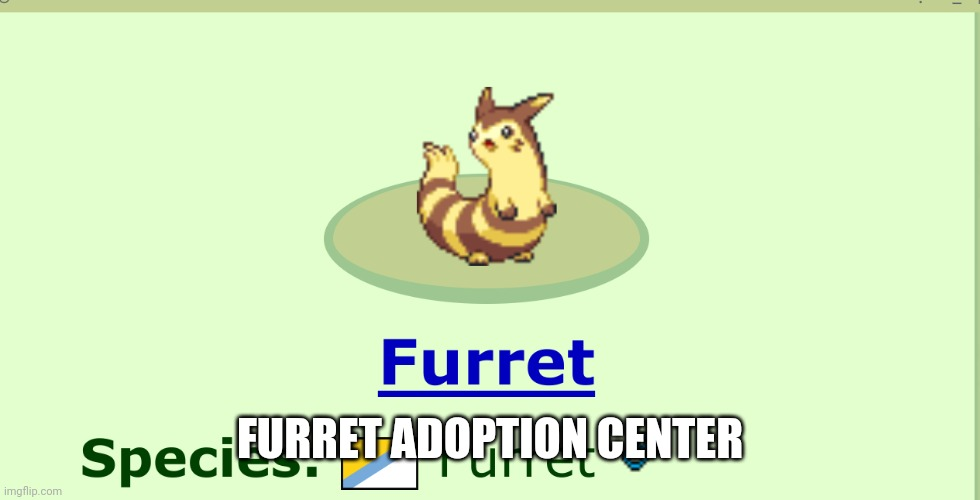 furret boi |  FURRET ADOPTION CENTER | image tagged in furret boi | made w/ Imgflip meme maker