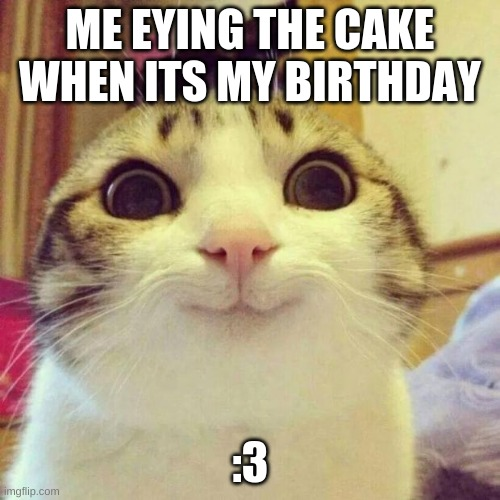 My bday cake |  ME EYING THE CAKE WHEN ITS MY BIRTHDAY; :3 | image tagged in memes,smiling cat,happy birthday | made w/ Imgflip meme maker