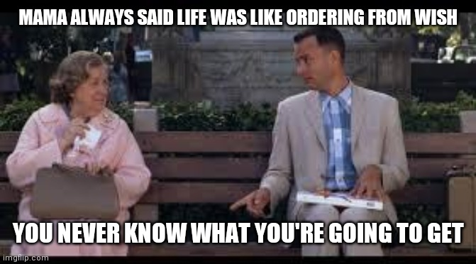 forrest gump box of chocolates |  MAMA ALWAYS SAID LIFE WAS LIKE ORDERING FROM WISH; YOU NEVER KNOW WHAT YOU'RE GOING TO GET | image tagged in forrest gump box of chocolates,memes | made w/ Imgflip meme maker