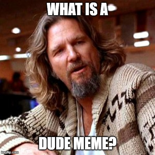 Confused Lebowski |  WHAT IS A; DUDE MEME? | image tagged in memes,confused lebowski | made w/ Imgflip meme maker