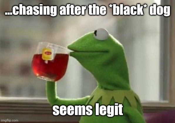 seems legit | ...chasing after the *black* dog seems legit | image tagged in seems legit | made w/ Imgflip meme maker